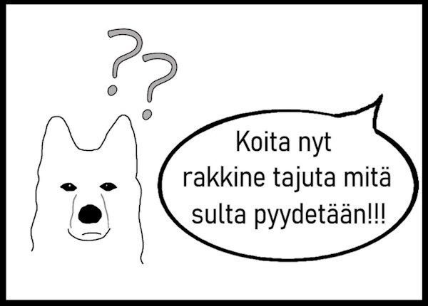 Koira Ei Tottele